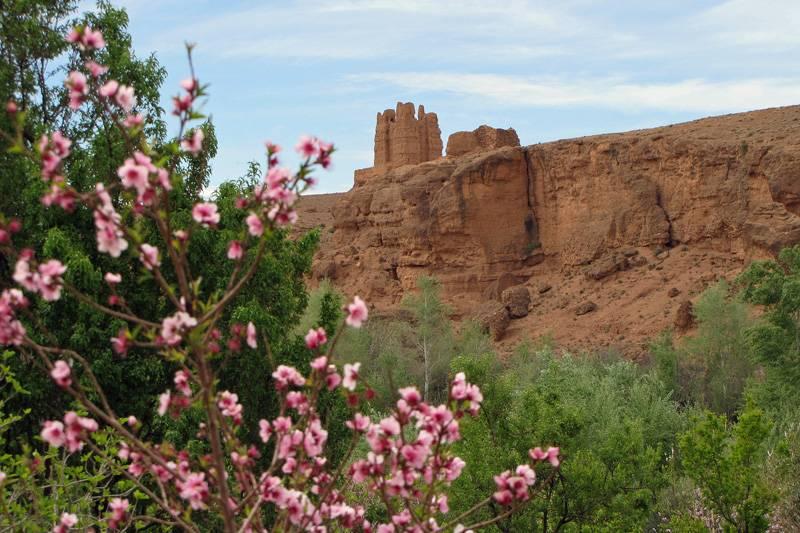 Marrakech to Fes 5 Day Desert Trip – Marrakech to Fes via Merzouga Desert Tour – Camel Trip from Marrakech to Fes – Erg Chebbi Desert Tour