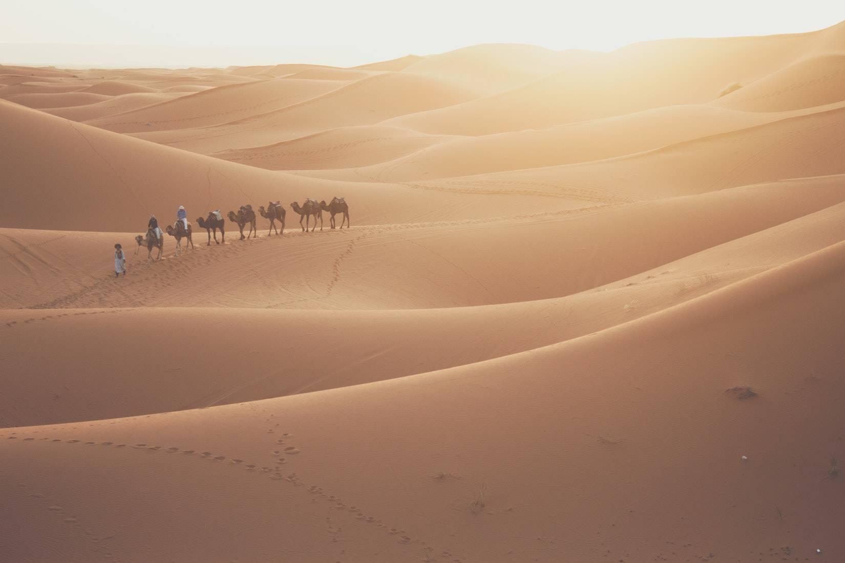 Tour 2 Dias Errachidia Desierto de Merzouga - Excursion en Camello y Noche en Haima